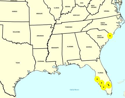 Middle Pleistocene Map