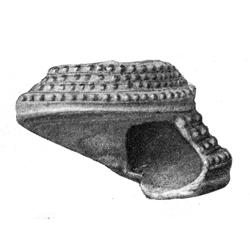 Calliostoma ruffinii